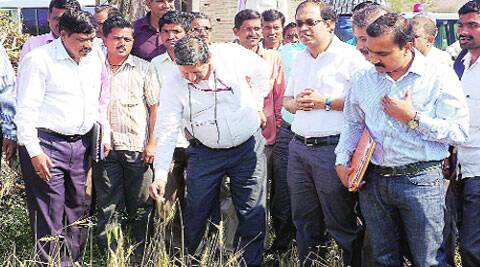 A central team inspects damaged crops in Aurangabad district Thursday. (PTI)