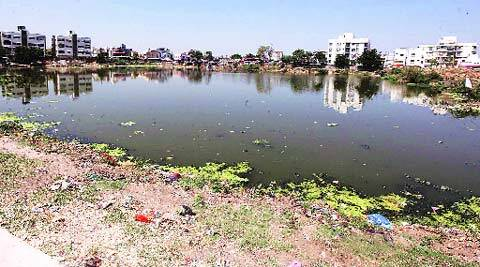 Sindhu Sagar is filled with muck, larvae and garbage. (Bhupendra Rana)