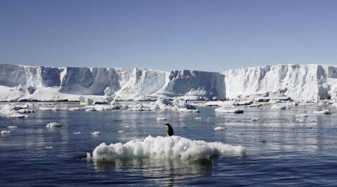 Julius Caesar is one of the very few Indians to have signed up for the Antartica expedition to battle global warming. (Reuters)