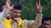 TDP miffed at BJP's 'weak' candidates for Andhra Pradesh state polls