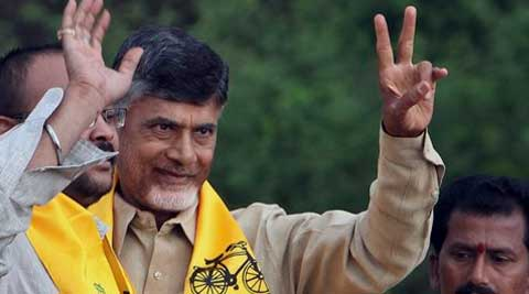 elugu Desam Party (TDP) President and former Chief Minister of Andhra Pradesh state, N Chandrababu Naidu. (PTI)