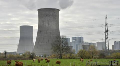 Cows are standing in front of the latest coal-fired power station of German power provider RWE in Hamm, Germany. (AP)