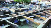Asked to pay Rs 22.40 cr, Dhobi Ghat residents pin hopes on Deora for relief