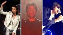 IIFA 2014: Priyanka Chopra, Anil Kapoor, Vivek set the ball rolling at Tampa Bay