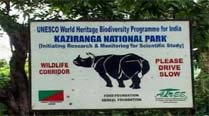 Allow regulated vehicular movement in Kaziranga: Assam to NGT