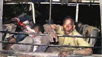 Horrific incident of Maoist attack in Dumka tells the tale of violence andanguish
