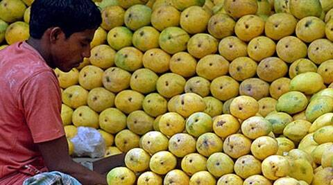 Although Europe is not a major market for Indian mangoes, any ban typically weighs on prices, hitting farmers' incomes. (Reuters)