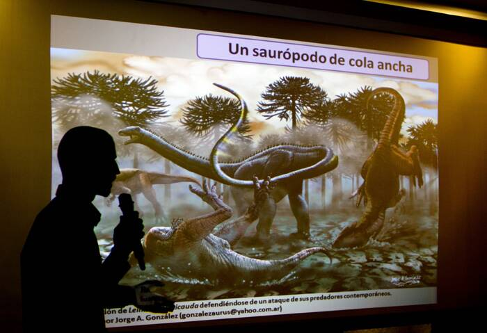 The most recent pretender to the 'biggest dinosaur' throne was Argentinosaurus, a similar type of sauropod, also discovered in Patagonia that weighs about 70 tonnes.<br />Paleontologist Pablo Gallina speaks to the press about a newly discovered dinosaur discovered in Argentina in Buenos Aires, Argentina. (Source: AP)
