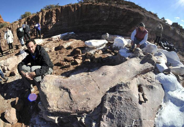 Move over T-rex, scientists have discovered the bones of the world's biggest dinosaur, as heavy as 14 African elephants and equal to a seven-storey building, in Argentina.<br />Paleontologists Jose Luis Carballido (L) and Ruben Cuneo pose next to the bones of a dinosaur at a farm in La Flecha. (Source: Reuters)