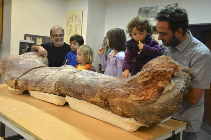 """Given the size of these bones, which surpass any of the previously known giant animals, the new dinosaur is the largest animal known that walked on Earth,"" researchers said.<br />Visitors look at the original fossilised femur of a dinosaur displayed on exhibition. (Source: Reuters)"
