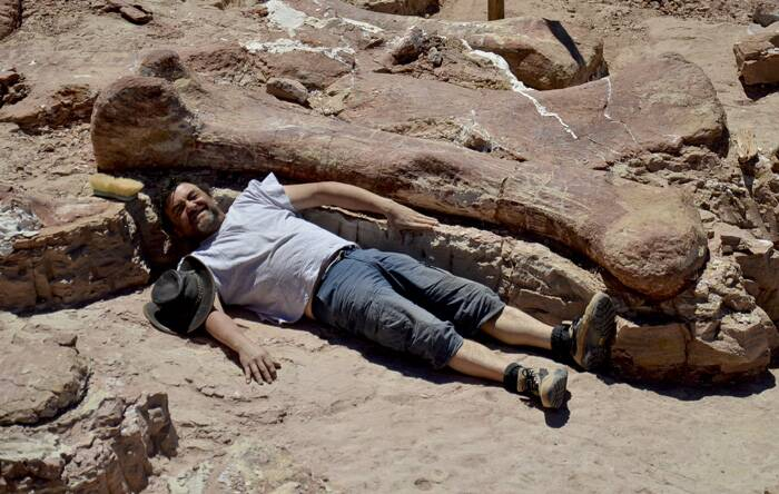 Scientists from the Museum of Palaeontology Egidio Feruglio, led by Dr Jose Luis Carballido and Dr Diego Pol, then excavated the fossilised bones.<br />Spanish paleontologist Jose Ignacio Canudo lies alongside a sauropod dinosaur femur, believed to be the largest in the world. (Source: AP)