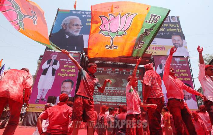 A child waves BJP party flag during the celebration. (Source: Express Photo by Sandeep Daundkar)
