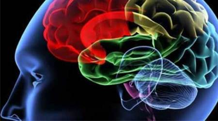 Researchers have demonstrated that human learning can be modified by stimulation of dopamine-containing neurons in a deep brain structure. ( Source: Reuters)