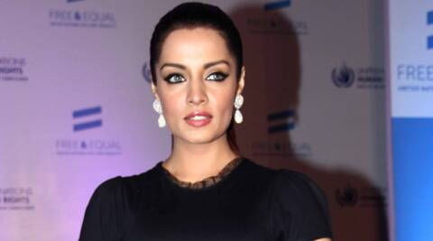 Celina Jaitly says she will not stop fighting for equal rights for LGBT community despite years of character assassination.