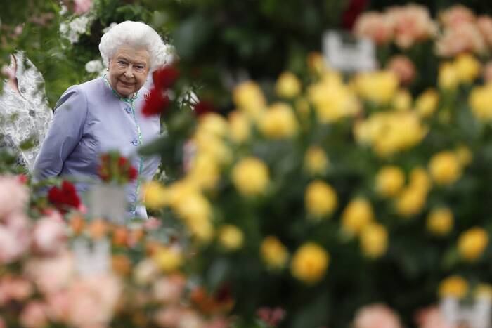 The Chelsea Flower Show, formally known as the Great Spring Show is a garden show held for five days in May by the Royal Horticultural Society in the grounds of the Royal Hospital Chelsea in Chelsea, London.<br />Britain's Queen Elizabeth II, walks among the floral displays during a visit to the Chelsea Flower Show in London. (Source: AP)