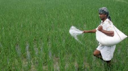 Deepak Fertilisers open to talks with rivals over Mangalore Chemicals & Fertilizers Ltdcontrol