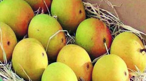 The EU has banned the export of Alphonso mangoes and four vegetables.