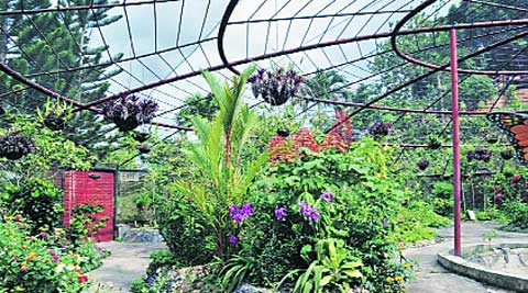 BMC says work to begin soon on the park inside SK Patil garden plot at Charni Road.