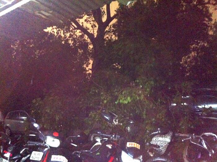 Trees were seen falling on the car. (Express photo by Apurva Singh)