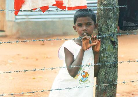A Tamil boy at the Menikfam Vanni refugee camp.