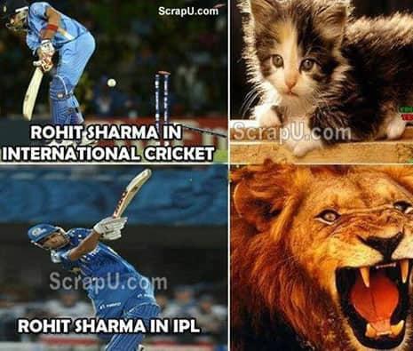 IPL Memes 6
