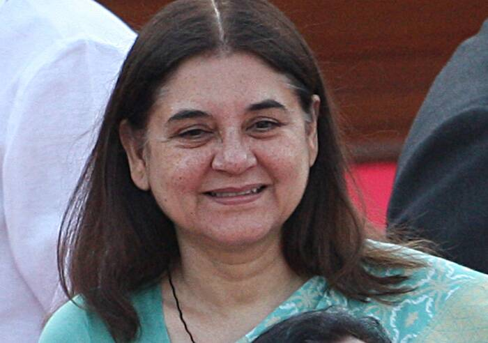 <b>Maneka Gandhi</b>, 57<br /><br /><b>This Election</b>: Won Pilibhit  Journey to Cabinet: Elected six times from Pilibhit and once from Aonla. An animal rights activist<br /><br /><b>Previous Ministerial Record</b>: MoS (Independent Charge) for Environment and Forests (1989-91); MoS (Independent Charge for Programme Implementation (January 1990-April 1990); MoS (Independent Charge) for Social Justice and Empowerment (1998-99); MoS (Independent Charge) for Social Justice and Empowerment (October 1999-September 2001); MoS for Culture and others