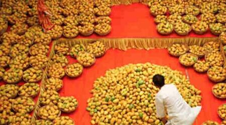 Mango dearer by 50-65%; Alphonso costs Rs 500-600/dozen: Study
