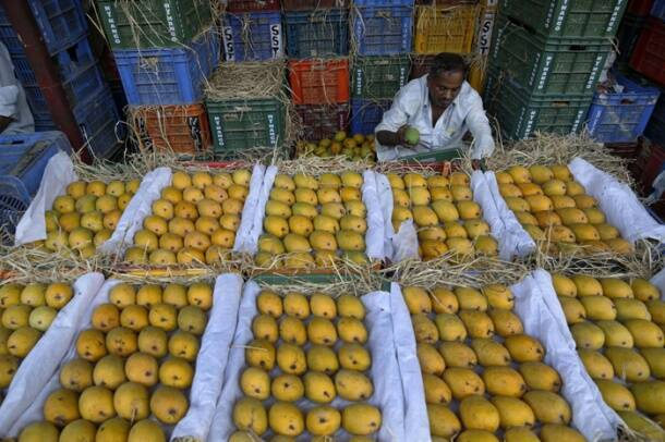 Make way for the king of fruits – Mango