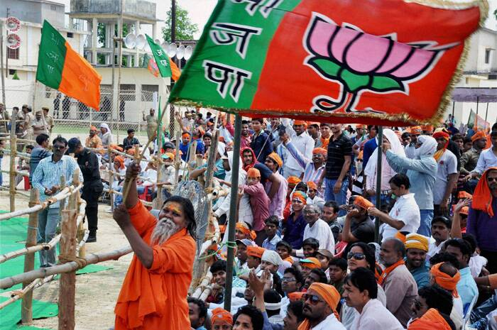 BJP supporters cheer during party PM candidate Narendra Modi's rally. (PTI)
