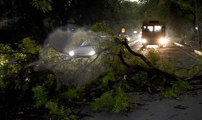 Most areas in city plunged into darkness immediately after the storm as uprooted trees snapped power lines. <br /> A tree branch blocks the traffic after a storm accompanied by dark clouds in New Delhi on Friday.(Source: PTI)