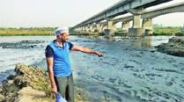 AAP workers puncture  Modi's clean Sabarmati  claim, collect samples