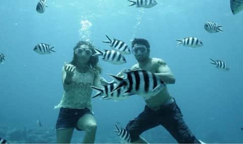 underwater480