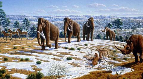 Ice age animals go extinct due to human hunting