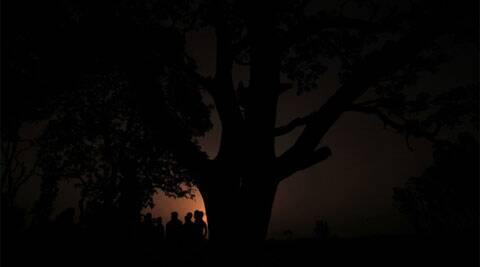 Silhouette of the tree where the two sisters who hung after being gangraped in Village Katra Sadatganj in Badaun. (Source: Express Photo by Praveen Khanna)