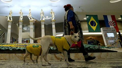 A woman strolls with dogs wearing Brazil jerseys in front of a statue tribute for Brazil's five World Cup titles at a shopping center in Sao Paulo (Source: AP)
