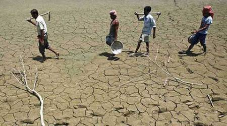 No special package for farmer suicides, damaged crops: Govt