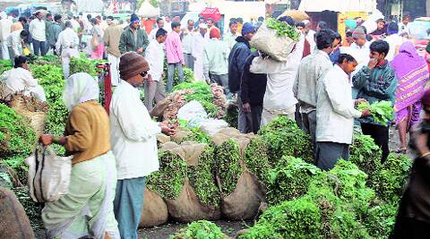The initiative to allow farmers to directly sell vegetables and fruits was taken under the National Initiative for Vegetables in Urban Clusters.
