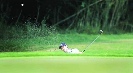 Other DDA public golf courses are located at Qutub, Lado Sarai and Bhalswa. (Archive)