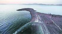Lakes in city to last just a month:BMC