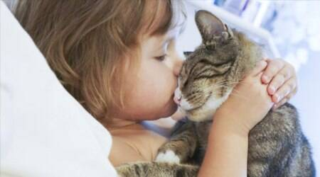 Pets may transmit antibiotic-resistant infections to humans, scientists believe. Source: Thinkstock Images