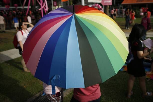 Oppostion fails to dampen spirits at Singapore's 'Pink Dot' rally