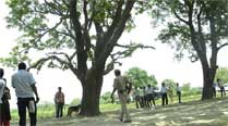 Another woman found hanging from tree in UP, gangrapesuspected