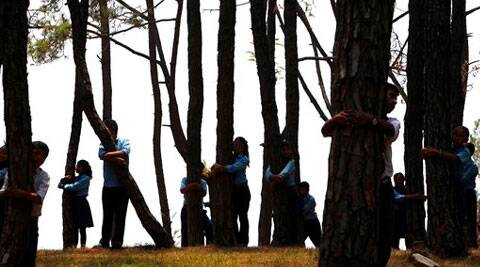 Nepalese students hug trees during a mass tree hugging on the World Environment Day on the outskirts of Katmandu. ( Source: AP )