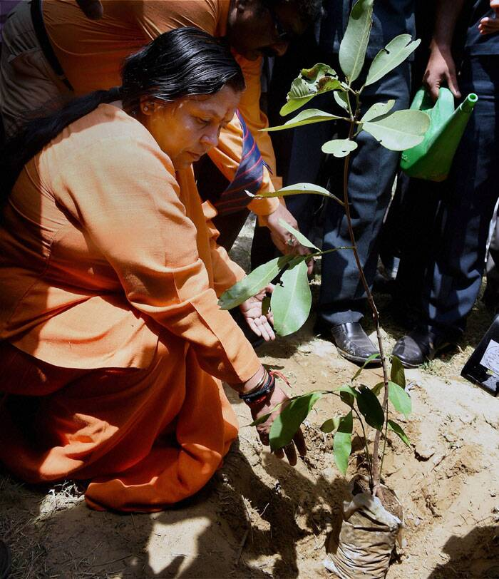 Union Water Resources Minister Uma Bharti plants a sapling in the memory of Kedarnath tragedy victims at Yamuna Ghat in New Delhi on Tuesday. (Source: PTI)