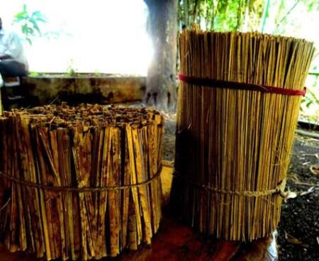 Bamboo also has several forest groups practicing bamboo art and craft. (Source: Swasti Pachauri)