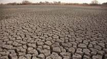 Drought likely in parts of west India: Agricultureminister
