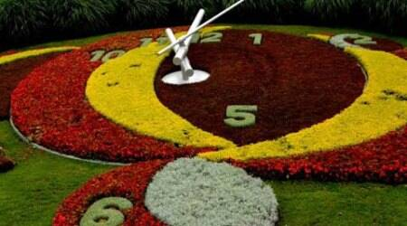 flower-clock-main