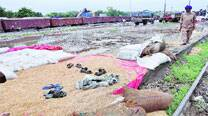 Foodgrains rot in rain at Vadodara station