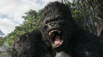 New 'King Kong' film to release in 2016