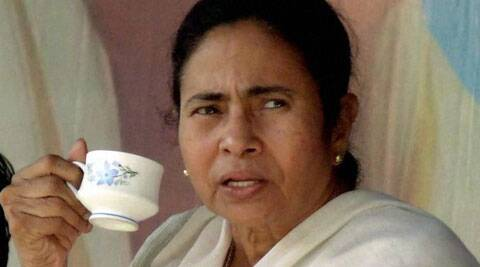 Chief Minister Mamata Banerjee (Source: PTI)